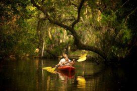 Estero River Florida