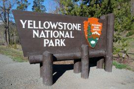Yellowstone Eingang
